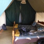 Queen size bed in a tent!!