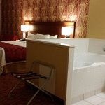Φωτογραφία: Courtyard by Marriott Niagara Falls