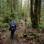 Hiking Cowichan Valley