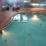 Pool at the hotel