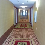 Hallway at the Holiday Inn Express Hotel & Suites Reno