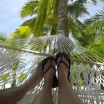 View from a hammock