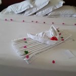 One of our many daily towel arrangements