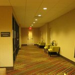 Hampton Inn & Suites Chicago/Mt. Prospect照片