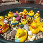 Rubber Duckies in the outdoor seating area. Cute!