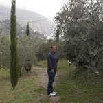 Walking into town through the olive trees