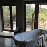 The River Lodge at Thornybush Foto