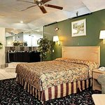 Foto de Palace Inn and Suites - Willowbrook
