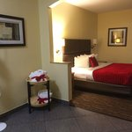 Photo de BEST WESTERN PLUS Lewisville/Coppell