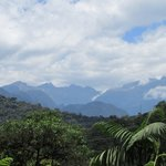 View of the cloudforest