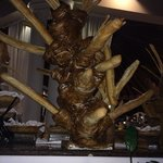 Saw this bread tree thing at the buffet. What?! Is the baker Dr. Seuss? Hilarious.