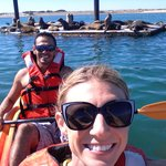 Kayaking with the seals in Morro Bay