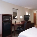 Photo de Hampton Inn East Lansing