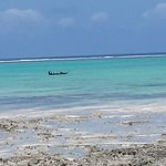 Photo de Reef & Beach Resort Zanzibar