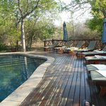 Foto van Grand Kruger Lodge