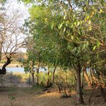 Photo de Lower Sabie Restcamp