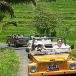 Bali Safari Tours - Day Tours