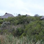 Foto Kichaka Luxury Game Lodge