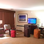 Hampton Inn & Suites Chicago - Downtown resmi