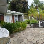 view of the grounds