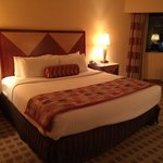 Crowne Plaza Houston River Oaks resmi