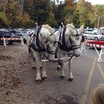 Carriage rides offered. Nice ride.