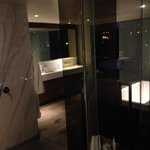 Bathroom in the penthouse suite