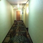 Photo de Staybridge Suites Chattanooga Downtown