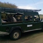 Safari expert and driver William in Range Rover was fantastic and safe driver