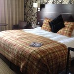 Mercure Maidstone Great Danes Hotel照片
