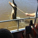 Awesome Experience on the Bayou!