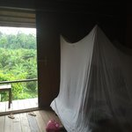 Paganakan Dii Tropical Retreat의 사진