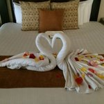 Towel swans that greeted us upon arrival