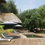 Photo de Luangwa River Camp
