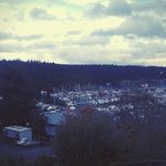 Foto di Friday Harbor House