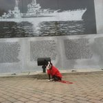 Jack visiting the USS Indianapolis Memorial