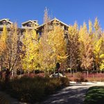 Fall colors at the Four Seasons