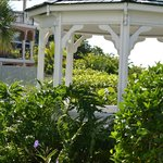Foto de Harrington House Beachfront Bed & Breakfast