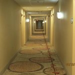 Foto di Hampton Inn Montgomery-South-Airport