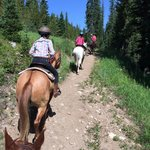On property horse trails