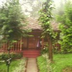 صورة فوتوغرافية لـ ‪Thekkady - Woods n Spice, A Sterling Holidays Resort‬