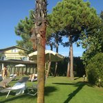 Photo of Hotel Villa Undulna Terme della Versilia