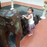 wid horses at reception