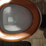 Sorry this is a picture of a broken toilet seat