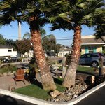 Foto de Beach Bungalow Inn and Suites