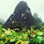 Li River Retreat resmi