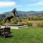 Bilde fra Hampton Inn & Suites Windsor - Sonoma Wine Country