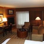 our spacious suite (pullout couch and fire place)