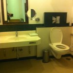 Disabled Access Bathroom - Washbasin too low, mirror too high and not tilted forward