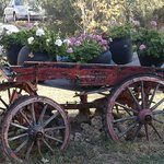 I love this old cart filled with pots of geraniums